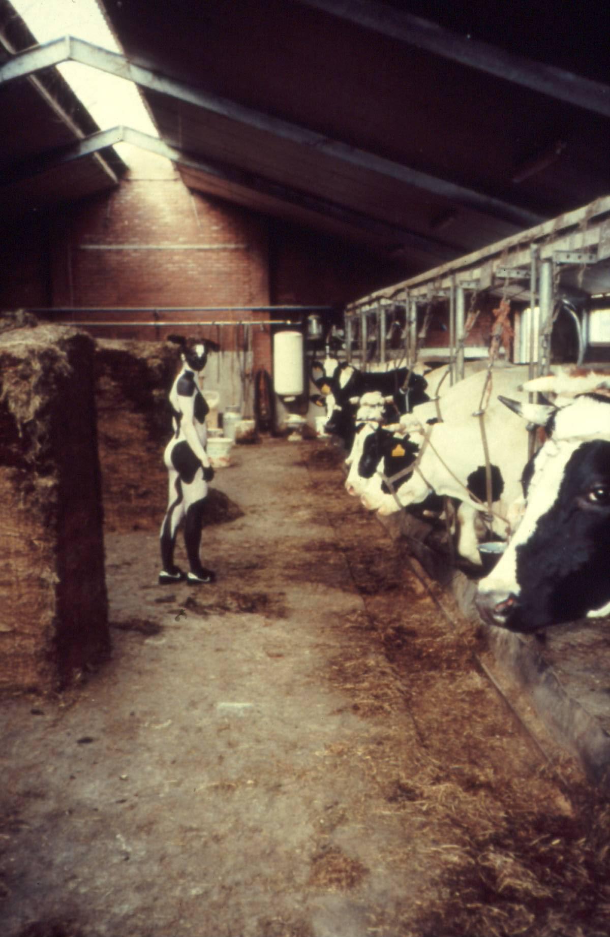 linda-molenaar-koei-perfomance-1994 Roland