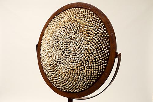Fibonacci 2020<div style='clear:both;width:100%;height:0px;'></div><span class='desc'>Afmetingen: 152 x 40 x 40 cm <br>Materiaal: Mensentanden, leer, vilt, staal <br>Foto: Cissie van der Ven </span>