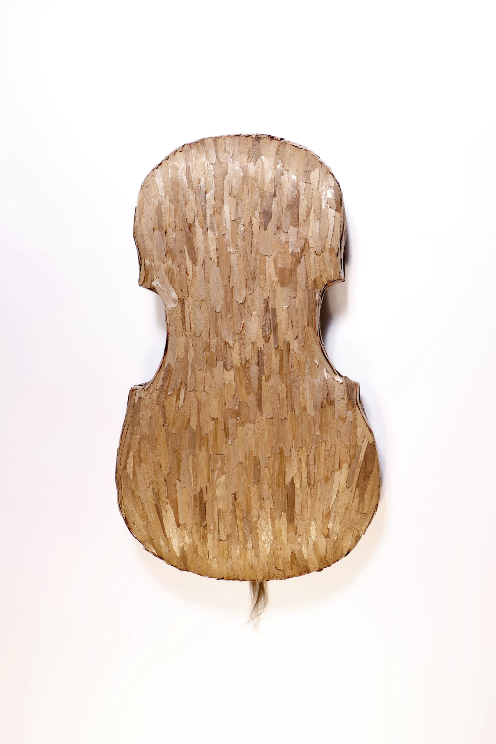 Cello 2011<div style='clear:both;width:100%;height:0px;'></div><span class='desc'>Afmetingen: 13 x 45 x 75 cm <br>Materiaal: Mensenhaar, cederhout, leer, polyester <br>Foto: Studio Zelden <br>Residentie I-Park Connecticut US</span>